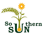 Southern Sun Landscaping